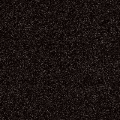 Shaw Floors Fielder's Choice 15′ Armour 00502_52Y92