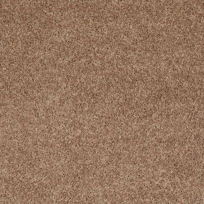 Shaw Floors Fielder's Choice 15′ Eagles Nest 00704_52Y92