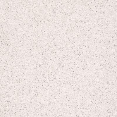 Shaw Floors Shaw Flooring Gallery Ellendale 15′ Halo 00100_5301G