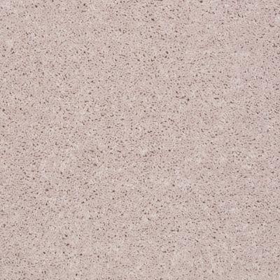 Shaw Floors Shaw Flooring Gallery Union City II 15′ Angel Cloud 00102_5304G