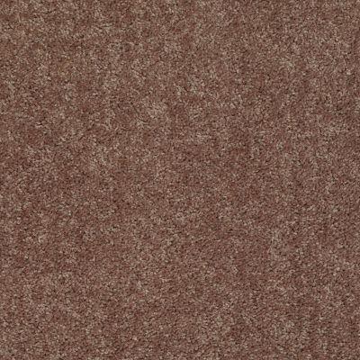 Shaw Floors Shaw Flooring Gallery Union City I 12′ Cattail 00702_5305G