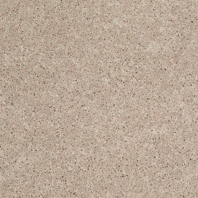 Shaw Floors Shaw Flooring Gallery Union City III 12′ Flax Seed 00103_5307G