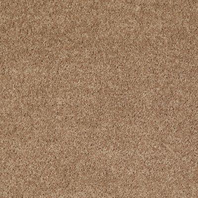 Shaw Floors Shaw Flooring Gallery Union City III 12′ Golden Echoes 00202_5307G