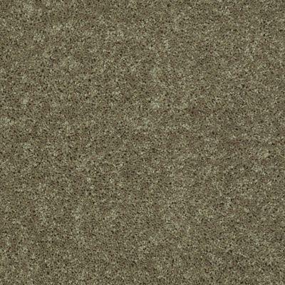 Shaw Floors Shaw Flooring Gallery Union City III 12′ Aloe 00300_5307G