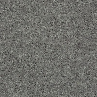 Shaw Floors Shaw Flooring Gallery Union City III 12′ Ink Spot 00501_5307G