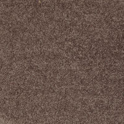 Shaw Floors Shaw Flooring Gallery Union City III 12′ Molasses 00710_5307G