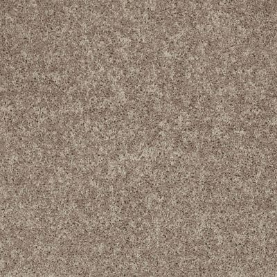 Shaw Floors Shaw Flooring Gallery Union City III 12′ River Slate 00720_5307G
