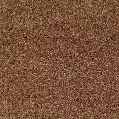 Shaw Floors Shaw Flooring Gallery Union City III 12′ Desert Sunrise 00721_5307G