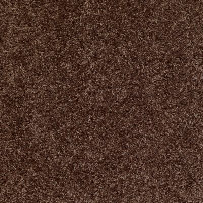 Shaw Floors Shaw Flooring Gallery Colesville 15′ Montana 00714_5309G