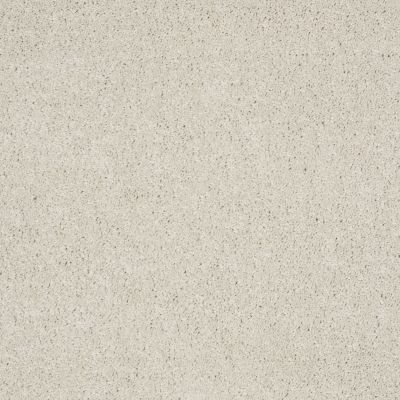 Shaw Floors Shaw Flooring Gallery Grand Image II Polar 00104_5350G