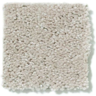 Shaw Floors Dyersburg II 12 Marble 55150_53755