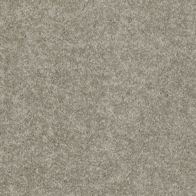Shaw Floors Freelance 15′ Taupe Mist 55792_53856