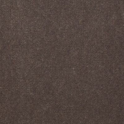 Philadelphia Commercial Emphatic II 30 Sandy Taupe 56595_54255