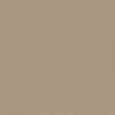 Philadelphia Commercial Color Accents Cornsilk 62111_54462