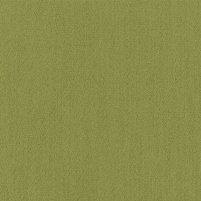 Philadelphia Commercial Color Accents Brite Green 62325_54462
