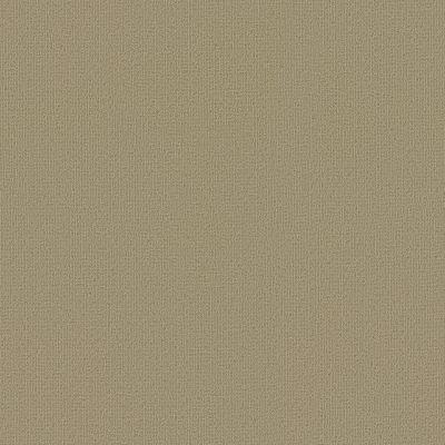 Philadelphia Commercial Color Accents Lichen 62544_54462