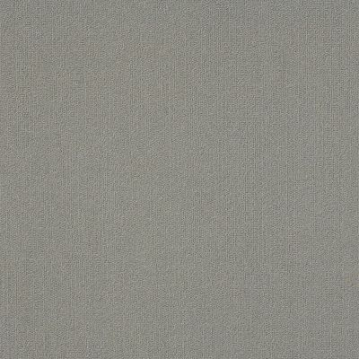 Philadelphia Commercial Color Accents Med Gray 62555_54462