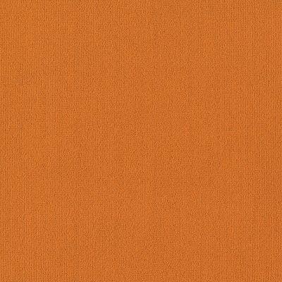 Philadelphia Commercial Color Accents Orange 62675_54462