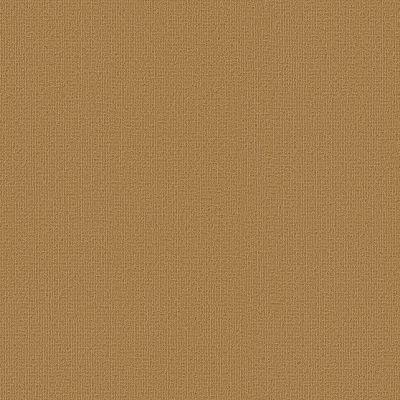 Philadelphia Commercial Color Accents Brasserie 62725_54462