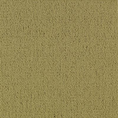 Philadelphia Commercial Color Accents Bl Herbal 62302_54584