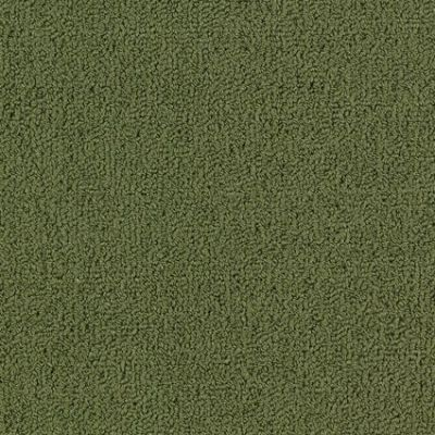 Philadelphia Commercial Color Accents Bl Cactus 62370_54584