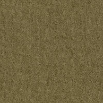 Philadelphia Commercial Color Accents Bl Aloe 62546_54584