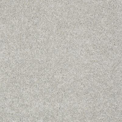Anderson Tuftex Creative Elegance (floors To Go) Hartley Pixie Dust 00112_545AF
