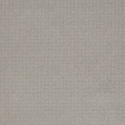 Shaw Floors Shaw Flooring Gallery Grand Image Pattern Sheer Silver 00500_5468G