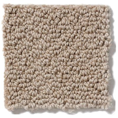 Shaw Floors Shaw Flooring Gallery Supreme Comfort Loop Clay Stone 00108_5469G