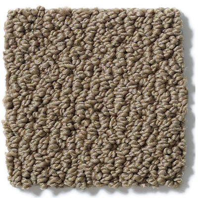 Shaw Floors Shaw Flooring Gallery Supreme Comfort Loop Bonsai 00324_5469G