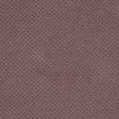 Shaw Floors Shaw Flooring Gallery Supreme Comfort Loop Grape Fizz 00900_5469G