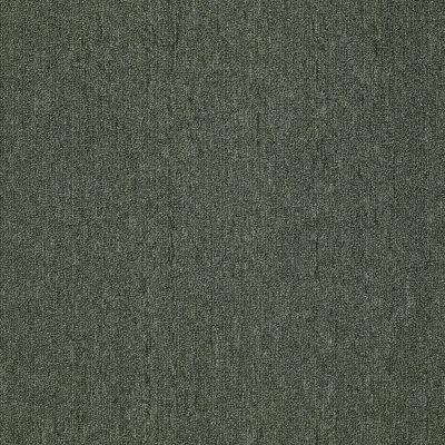 Philadelphia Commercial Neyland III 20 15′ Shady Grove 66360_54769