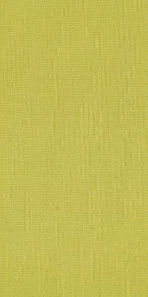 Philadelphia Commercial Color Accents 18 X 36 Limelight 62284_54786