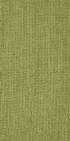 Philadelphia Commercial Color Accents 18 X 36 Brite Green 62325_54786