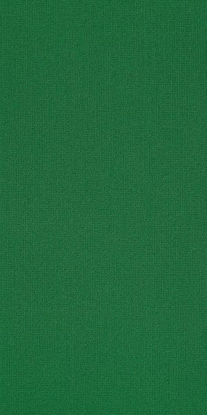 Philadelphia Commercial Color Accents 18 X 36 Dark Green 62375_54786