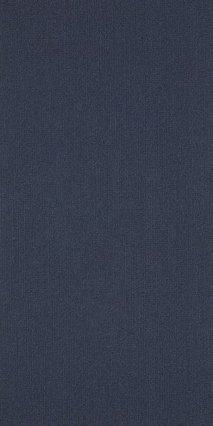Philadelphia Commercial Color Accents 18 X 36 Navy 62496_54786