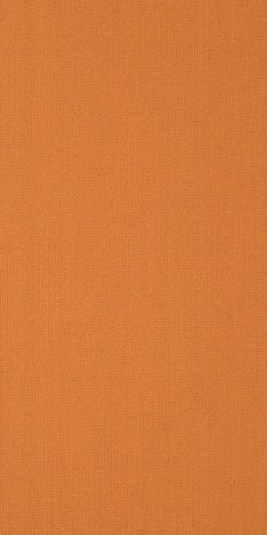 Philadelphia Commercial Color Accents 18 X 36 Orange 62675_54786