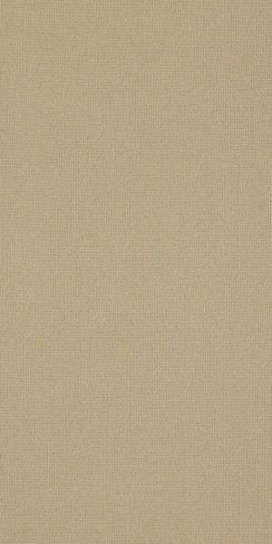Philadelphia Commercial Color Accents 18 X 36 Cashmere 62706_54786