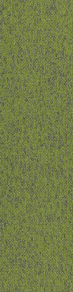 Philadelphia Commercial Modern Terrain Basin Taiga 00315_54847