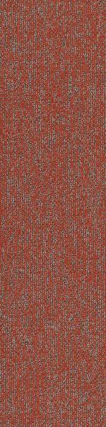 Philadelphia Commercial Modern Terrain Basin Miombo 00816_54847
