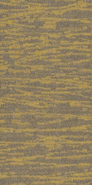 Philadelphia Commercial Modern Terrain Tidewater Monadnock 00220_54849