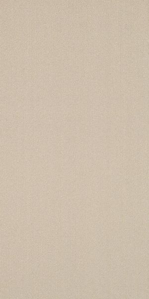 Philadelphia Commercial Color Accents 9×36 Oatmeal 62114_54858