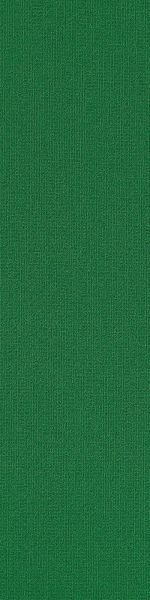 Philadelphia Commercial Color Accents 9×36 Dark Green 62375_54858