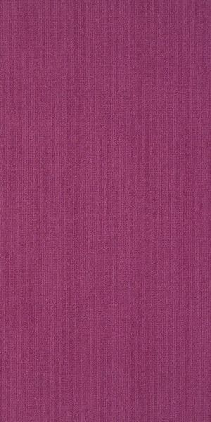 Philadelphia Commercial Color Accents 9×36 Calypso 62890_54858