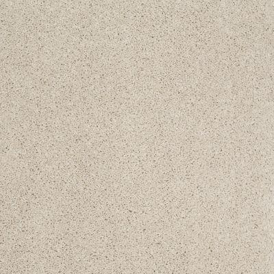 Shaw Floors Shaw Flooring Gallery Embark Canvas 00103_5506G