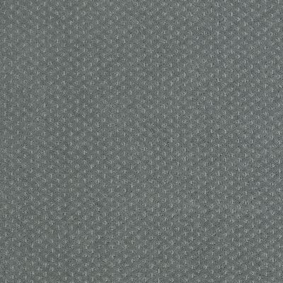 Shaw Floors Shaw Flooring Gallery Departure Refreshing 00412_5510G
