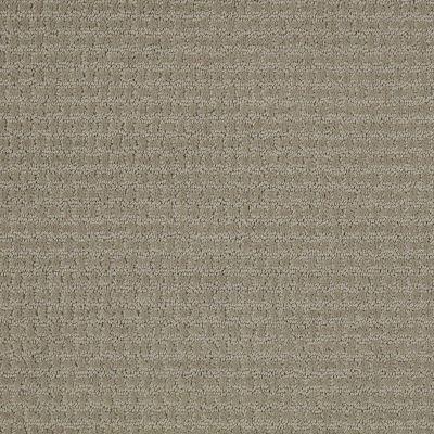 Shaw Floors Shaw Flooring Gallery Fast Lane Gray Flannel 00511_5511G