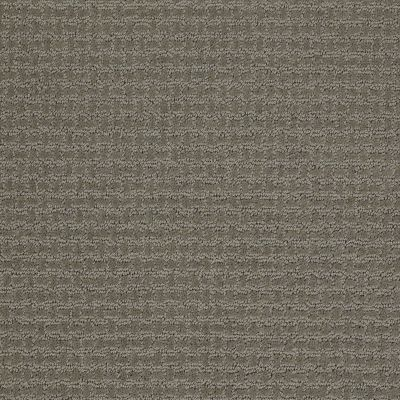 Shaw Floors Shaw Flooring Gallery Fast Lane Pewter 00513_5511G