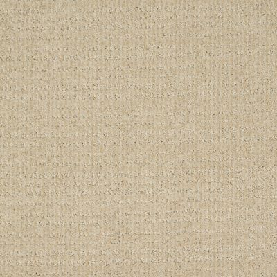 Shaw Floors Shaw Flooring Gallery Unleashed Linen 00101_5514G