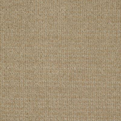 Shaw Floors Shaw Flooring Gallery Unleashed Wool Skein 00111_5514G